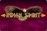 игровые автоматы Дух Индейцев