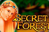 Таинственный Лес – игровые автоматы