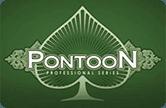 Игровой автомат онлайн Понтун Про Серия